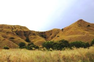 Pulau Gili Lawa Darat