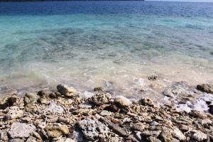 karang di pantai Sebuku