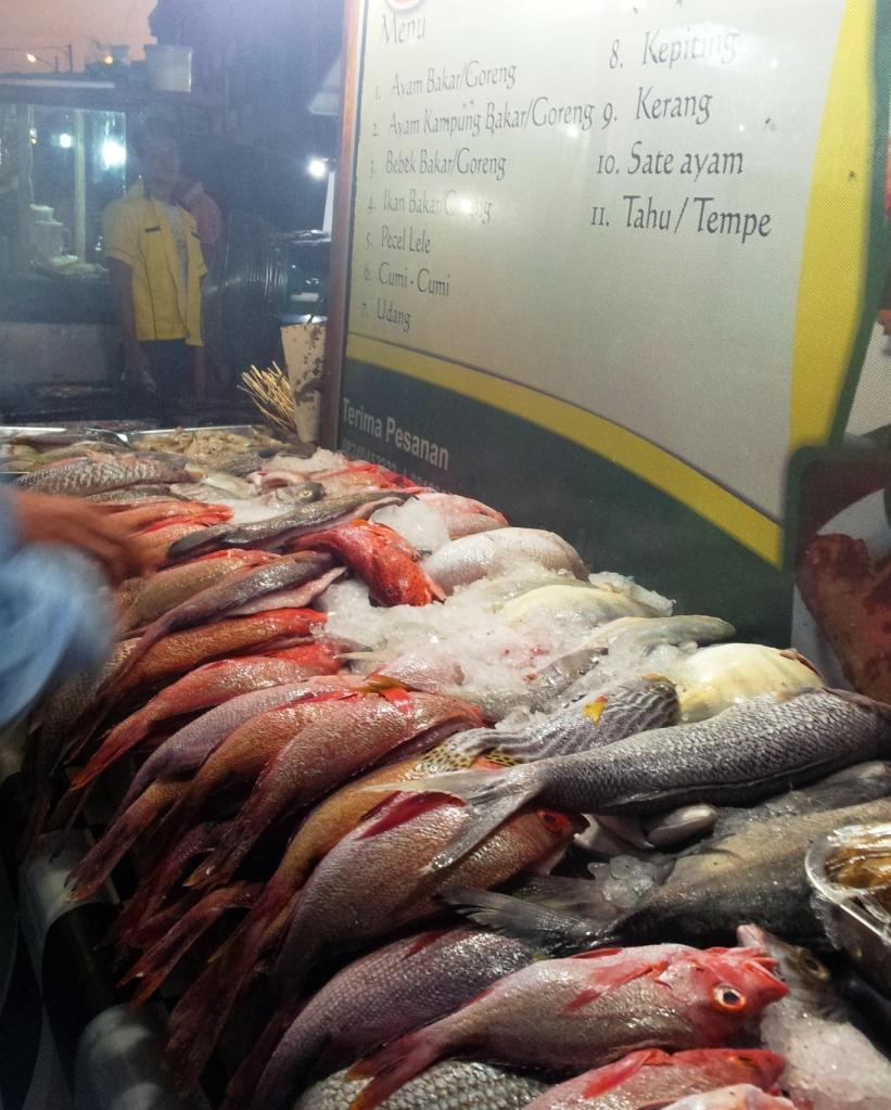 Ikan segar yang dapat ditemukan di sekitaran Pantai Tedis